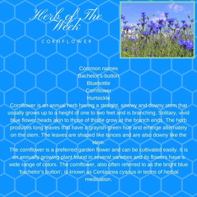 Herb of The Week (2)