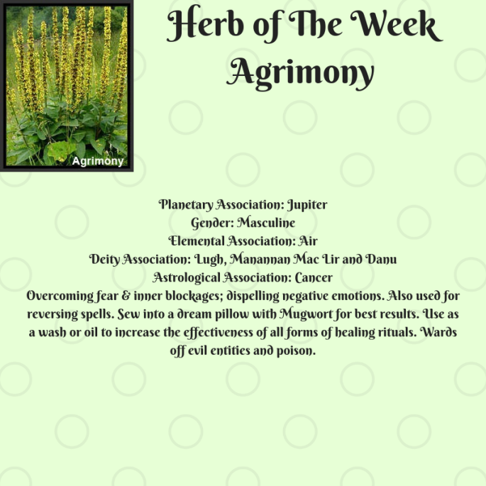 Herb of The WeekAgrimony