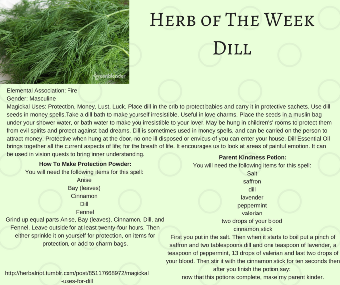 Herb of The WeekDill