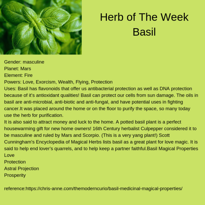 Herb of The Week Basil