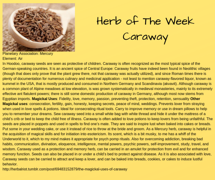 Herb of The Week Caraway