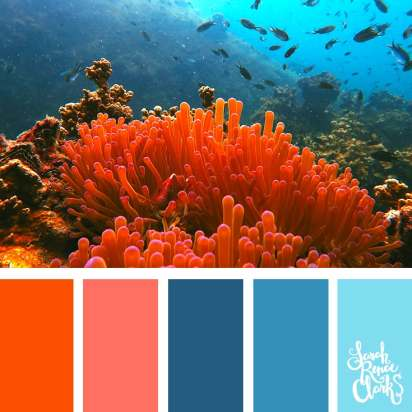 Color-Palette-278-living-coral