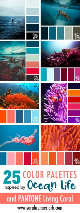 color-palettes-ocean-life-living-coral-02