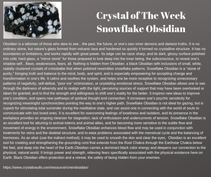 Crystal of The Week Snowflake Obsidian