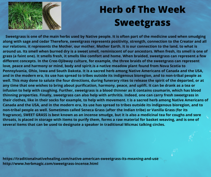 Herb of The Week Sweetgrass
